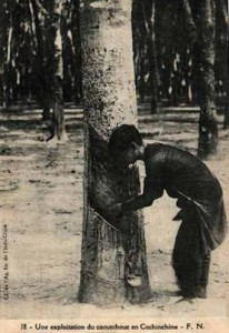 Rubber tapping - extraction of latex from rubber trees - in colonial Indochina